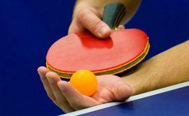 Các loại cán vợt bóng bàn