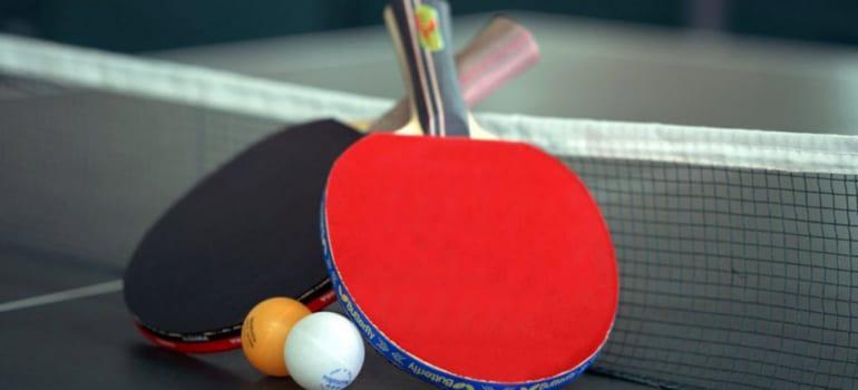 Chọn mặt vợt bóng bàn
